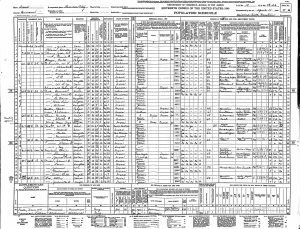 US 1940 Census of Dawson County, TX