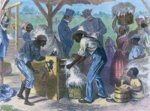 Slave Census